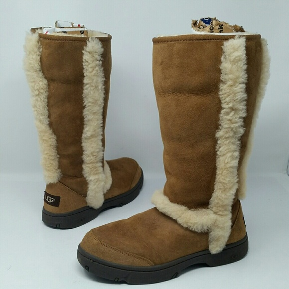 46496e42e7a Ugg Australia Women's Shearling Lined Boots